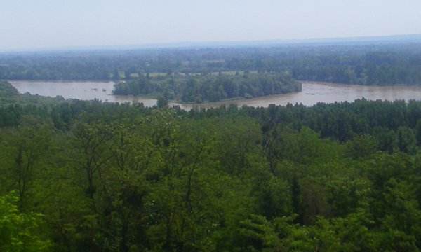 View over the Drava River a couple of hours ago.