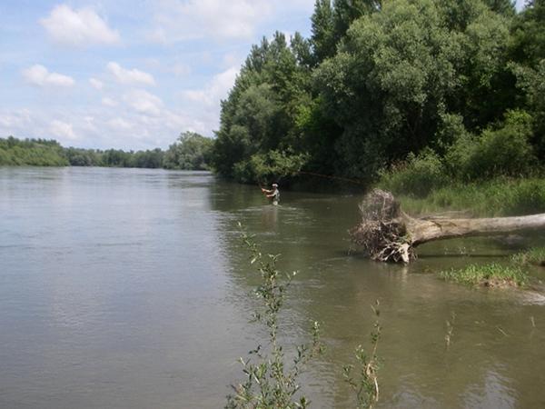 upstream1
