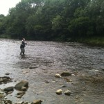 Fishing for imaginary seatrout and salmons