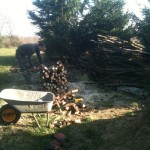 Wood chopping!