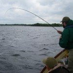 Day 2.. John into a great fish on the first drift..