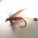 Size 12 Fiery Claret and Mallard..