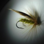 Size 10 Standard Green Peter..