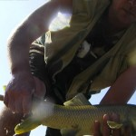 Barbel in Spain, my biggest.