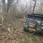 The Jimny at the bottom of the woods of Latohegy