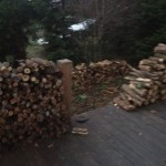 The wood pile!