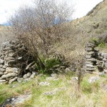 Some NZ history.. The remains of a shack from the gold mining era.
