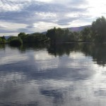 Dunstan in the flat calm. Today I cracked a method which nailed. A single simple dry fished fast, accurately and often!