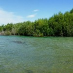 Panorama of one of the river mouths we fished around.