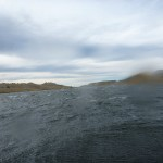 This made the paddling a bit mental.. Wind is a curse in NZ!