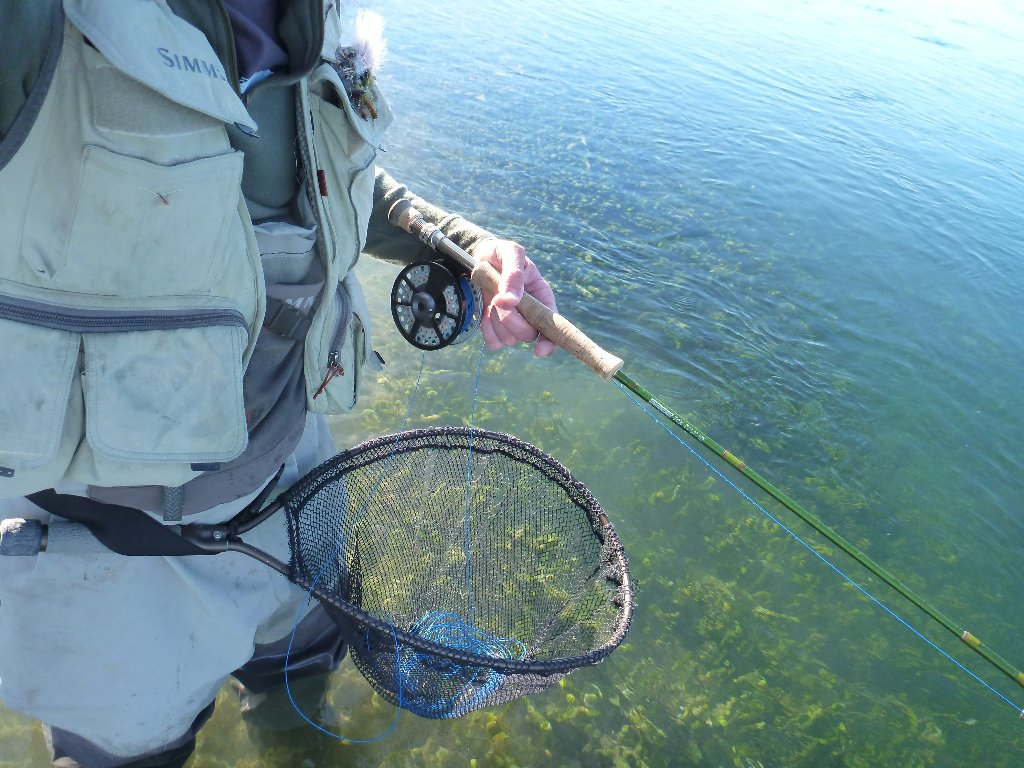 I forgot my stripping basket... so I improvised. My weight net jammed in my wading belt made a perfect one!! As good, if not better than the real thing..
