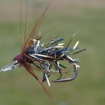 This unweighted spider has been deadly on the lake. Singly or on a dropper, blind or sight.