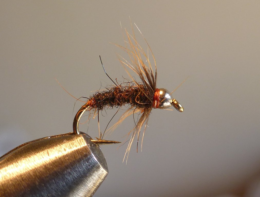 My simple spider. I pretty much always tie this in a size 14. Kamasan B175 like all my flies. Dries included.