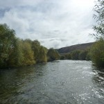 A beautiful river.. Sun is a huge advantage but not essential. Even in bad light some fish can still be spotted.