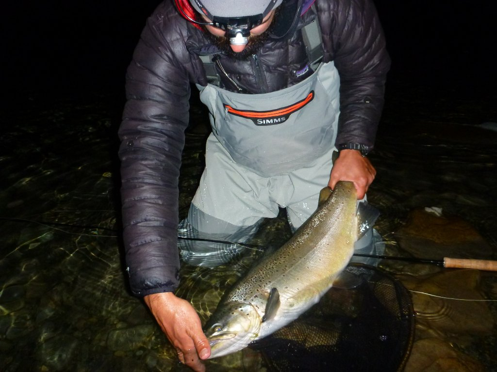 On the first night Jeff had a couple on a black streamer.. I had one hit on the mouse.