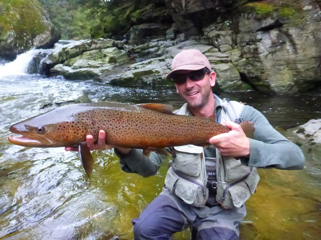 "This Taimen like trout was incredibly long, it weighed 8.5lbs. with condition it would have been some fish, but, as we say in Ireland, ""If your aunt had balls she'd be your uncle!"""