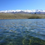 The following day, Lake Dunstan. My home water!
