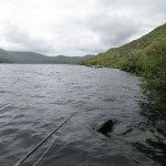 Fishing the shore down on Lough Fee, I had heaps of little browns and lost a grilse at the end of the day..