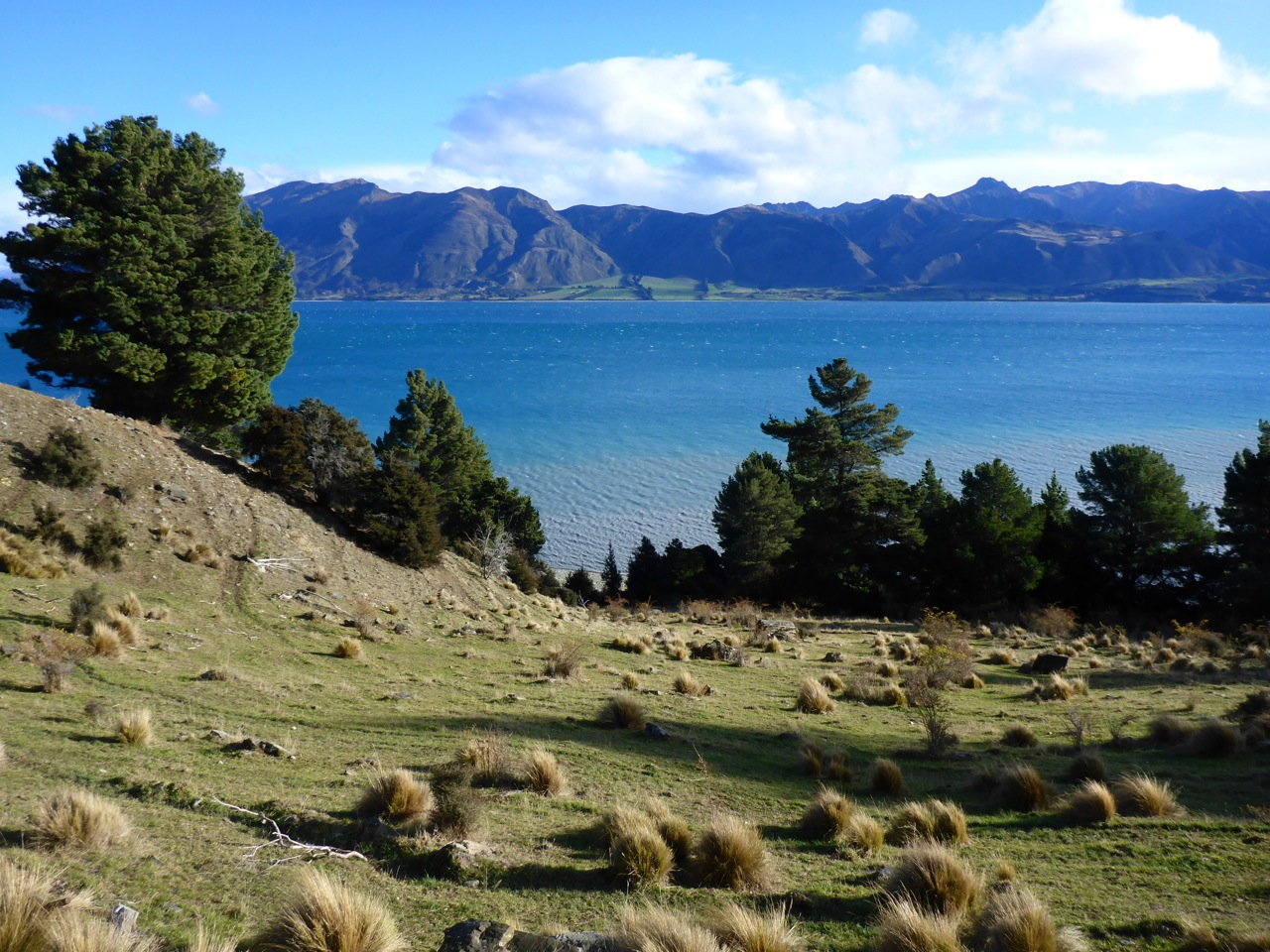 A lovely view over lake Hawea near Timaru Creek mouth.
