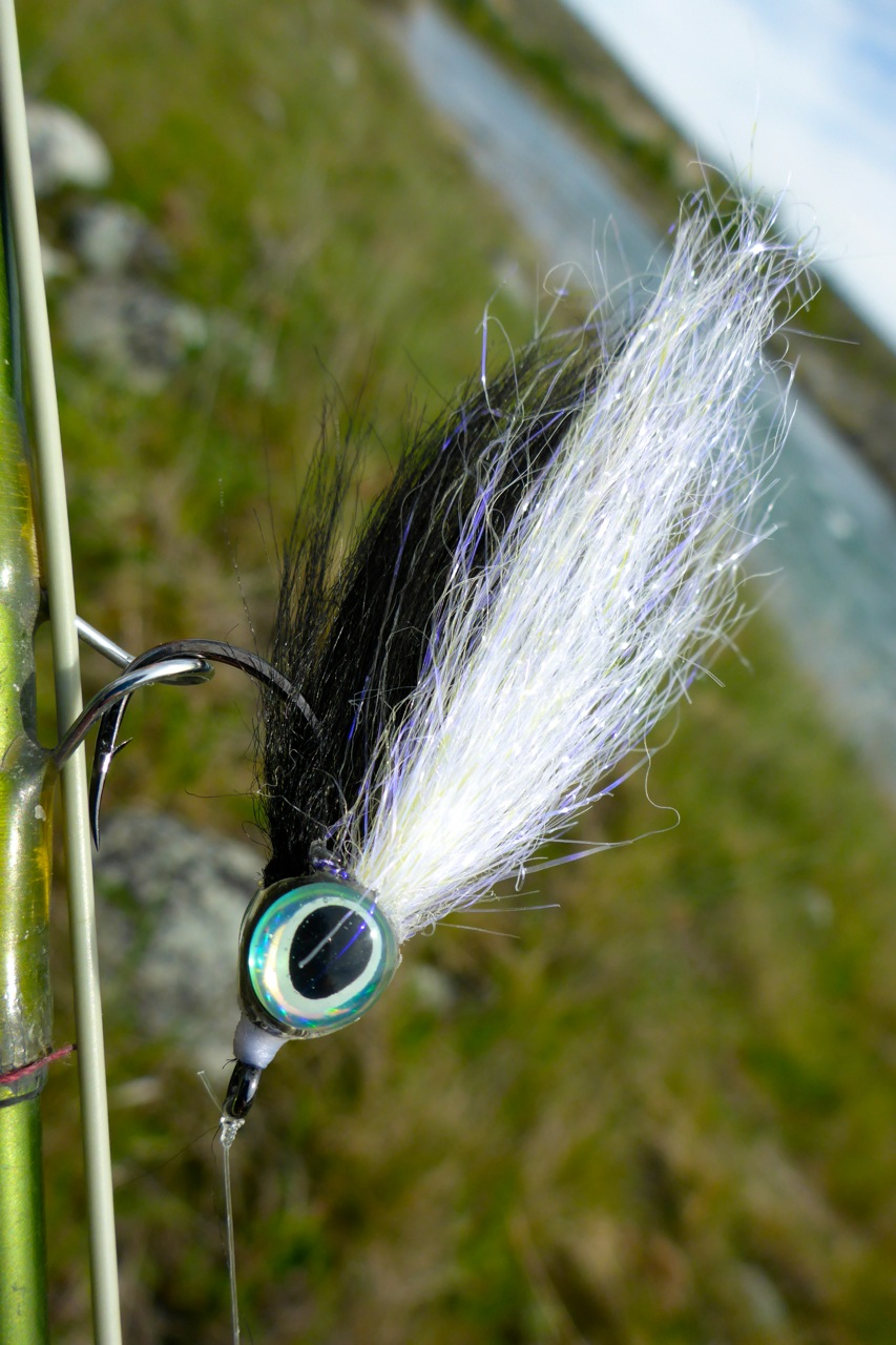 The salmon couldn't resist this big eyed streamer from Stu's Superior Flies..