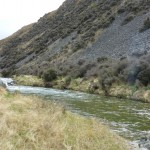 Some disappointing exploration on a high country stream which I haden't fished for years..