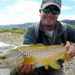 Day 2. This super trout took a blow fly and fought like a demon!