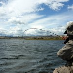 Applying the pain on a high country dam..
