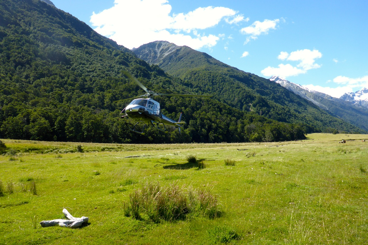 A heli-option for Tim and Emily..