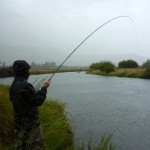 David into a very welcome fish on a brutal summers day!