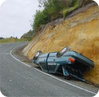 when you look at roadside verges be sure to park carefully