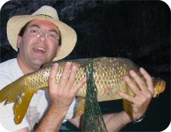 Jose and an ant-caught carp