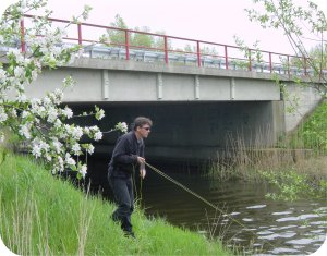 amongst the flowers and the bridges... pike fishing Berlin