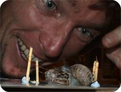 Where does Freddy the Killer Snail get his energy from? Has Terrible Tim been fed Slug Pellets? The crowd goes wild!