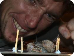Oh my goodness! Freddy the Killer Snail puts Terrible Tim into a death lock. Victory is close!