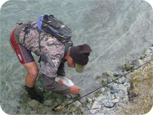 back country wet wading kiwi style