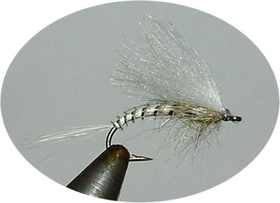Ben's no-hackle Biot Emerger