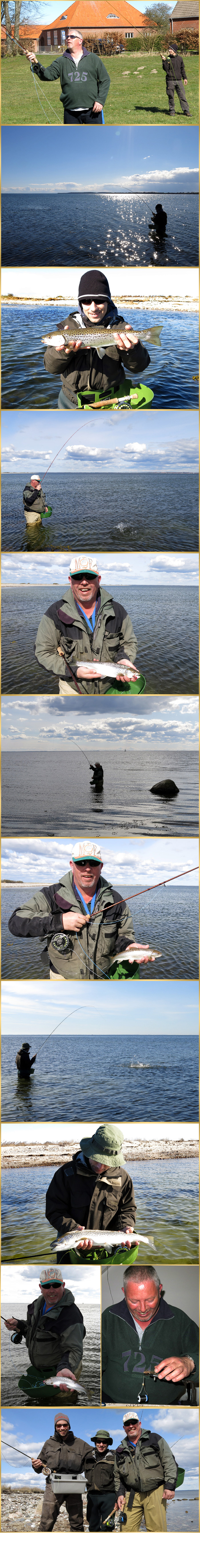 fly fishing for Sea trou