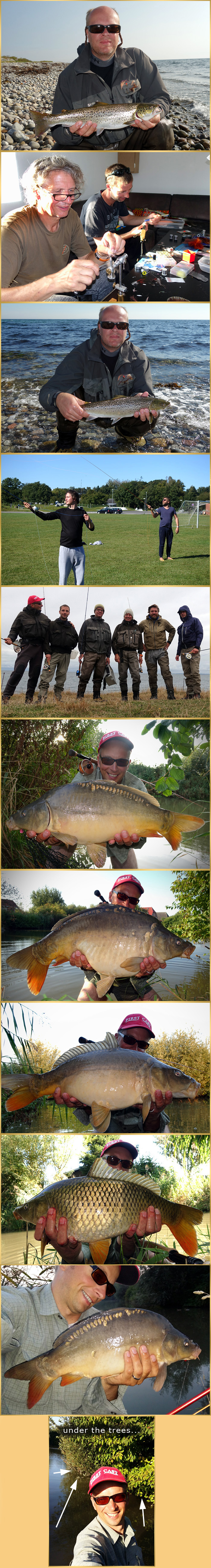 flyfishing for carp