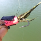 Vince's Loud Mouth Popper variation. Great for Snakehead!