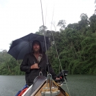 Raining days in Temenggor lake