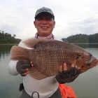 Chuan's first wild Gourami on fly