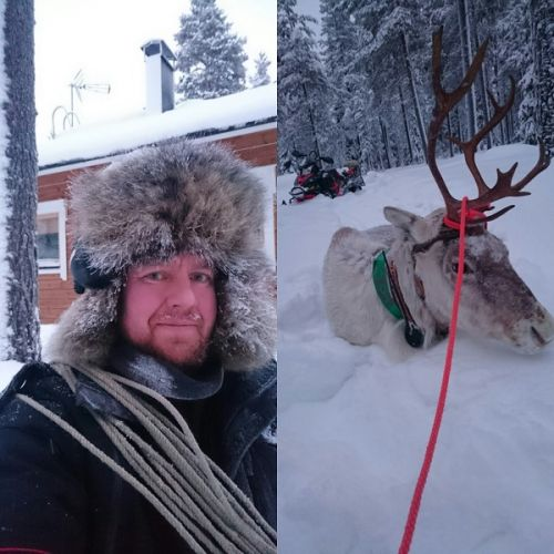 catching reindeer